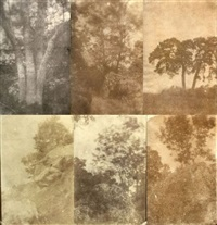 arbres et rochers (study)(6 works, various sizes) by charles edouard (baron de crespy) le prince