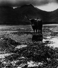 loch slapin, isle of skye by bill brandt