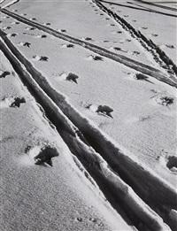 untitled (tracks in the snow) by siegfried lauterwasser
