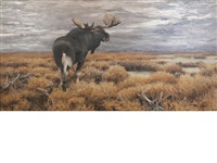 moose in the swedish highlands by wilhelm friedrich kuhnert