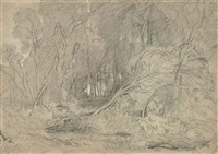 a clearing in a wood by john sell cotman