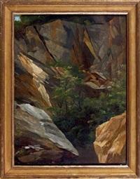 étude d'arbres et de rochers (study) by auguste pichon