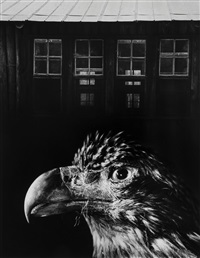 bless our home and eagle by jerry uelsmann
