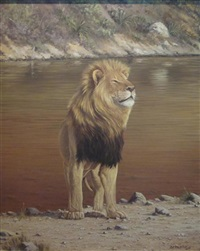 king of the jungle by robert mcintosh