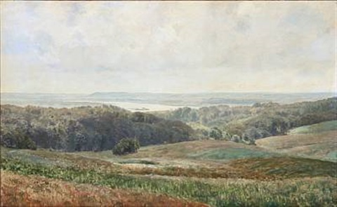 view towards silkeborgsøerne denmark by janus andreas barthotin la cour