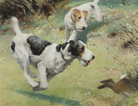 fox terriers chasing a rabbit the red spotted handkerchief 2 works by septimus e scott