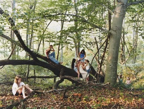 forest by justine kurland