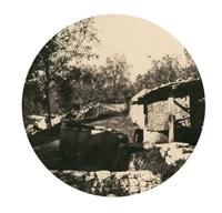 environs de cannes grasse by charles nègre