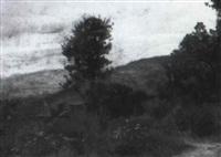 paesaggio by pietro senno