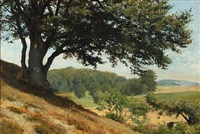 hilly danish summer landscape by otto bache