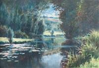 la rivière aux nénuphars - (probablement la sarthe) by mary renard
