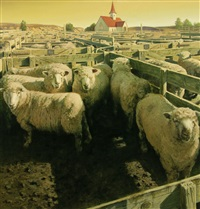 sheep in pen by barry ross smith