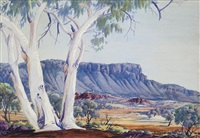 untitled (white ghost gum) by albert namatjira