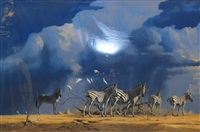 zebra by kim donaldson
