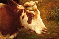 head of a cow by fedor van kregten