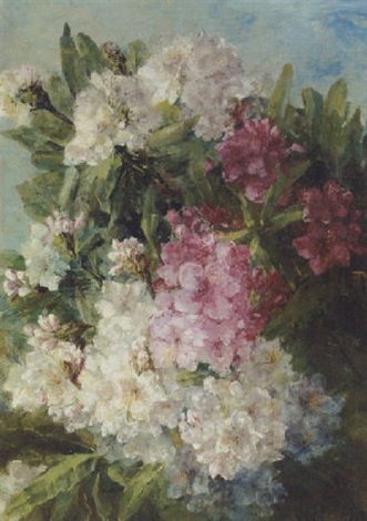 rhodondendrons by adrienne jacqueline s jacob