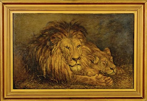 lion and lioness by percy harland fisher