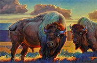 two buffalo by nancy glazier