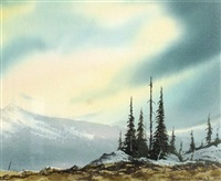 mountain top trees by simon camping