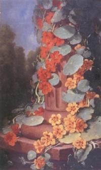 nasturtium by frederick s. batcheller