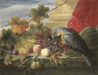 still life of grapes, peaches, plums, cherries, redcurrants, a gourd and a parrot on a stone ledge by james charles ward