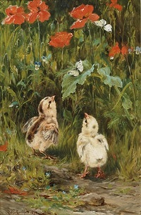 chicks and butterflies amongst poppies by robert morley