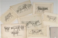 vaches (7 works, various sizes) by jean daniel huber