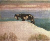 caballo en las dunas by juan carlos figari castro