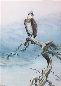 perching hawk by george edward lodge