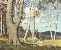 county wicklow woodland scene by mabel young
