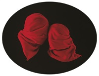 red veils by sarah charlesworth