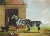 two dapple grey carriage horses with dogs outside a stable by george w. miller