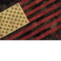 flag by shepard fairey