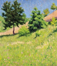hillside with flowers by samu börtsök