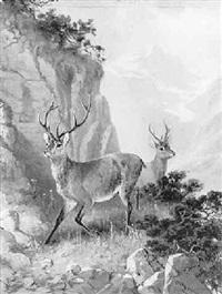 zwei hirsche im hochgebirge by otto grashey