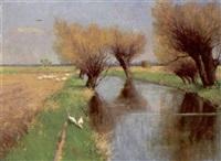 gänseschar an kanal mit kopfweiden in sonniger voralpenlandschaft by paul carl jünemann