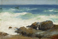 waves breaking on rocks by frank duveneck