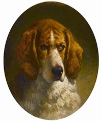 study of a hound by george earl