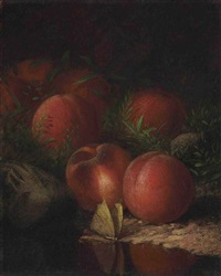 still life with peaches and moth by rufus wright