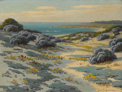 bush lupine and poppies, sand dunes, monterey by john marshall gamble