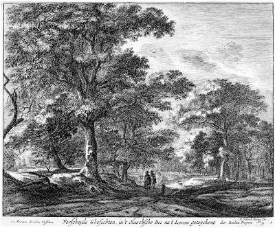 ansichten aus den wäldern von den haag set of 6 by roelant roghman