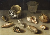 exotic shells on a table with a glass beaker by jacques linard