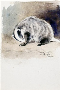 badger - study (+ fox cubs - study, irgr; 2 works) by eileen alice soper