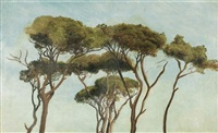 etude de pins parasols by karl e.r. heinrich lehmann