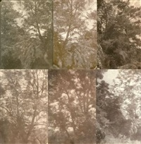 arbres et rocher (study)(8 works, various sizes) by charles edouard (baron de crespy) le prince