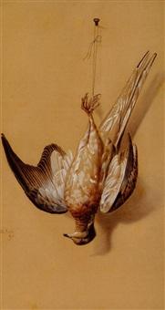 nature morte: passenger pigeon by achille perelli