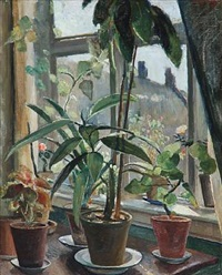 flower pots on a window sill by carl fischer