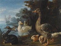 a cockerel, hens, doves and a parrot in a formal garden setting; ducks, guinea pigs and a rabbit in a wooded landscape beside a lake (pair) by david de coninck