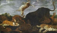 hounds attacking a bull by paul de vos