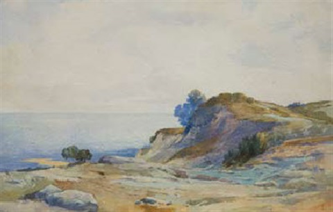 new zealand coastal landscape by frank wright